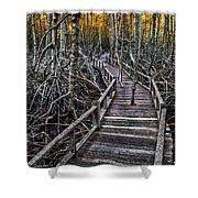 Footpath in mangrove forest Shower Curtain by Adrian Evans
