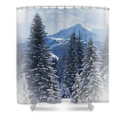 Forest In The Winter Shower Curtain by Carson Ganci