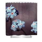 Forget Me Not 01 - S05dt01 Shower Curtain by Variance Collections