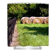Four Corners Shower Curtain by Karen Wiles