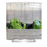Friends Shower Curtain by Derek Holzapfel