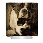 Friendship Is The Greatest Gift Of All Greeting Shower Curtain by DigiArt Diaries by Vicky B Fuller