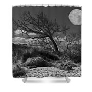 Full Moon Over Jekyll Shower Curtain by Debra and Dave Vanderlaan