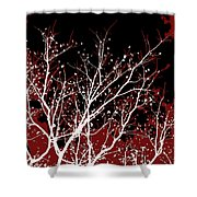 Genesis Shower Curtain by Glennis Siverson