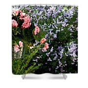 Geranium And Lilac Painting Shower Curtain by Will Borden