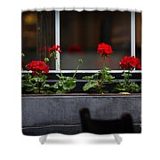 Geranium Flower Box Shower Curtain by Doug Sturgess