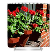 Geraniums In Germany Shower Curtain by Carol Groenen