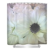 Gerbera Softness       Shower Curtain by Kaye Menner