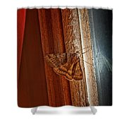Ghostly Visage Shower Curtain by Susan Capuano