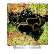 Gnarly Autumn Beauty Shower Curtain by Will Borden