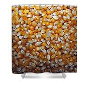 Golden Corn Shower Curtain by LeeAnn McLaneGoetz McLaneGoetzStudioLLCcom
