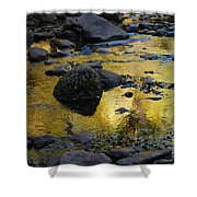 Golden Fall Reflection Shower Curtain by Heather Kirk