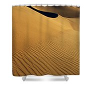 Golden Hour Shower Curtain by Bob Christopher