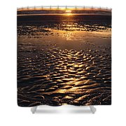 Golden Sunset On The Sand Beach Shower Curtain by Setsiri Silapasuwanchai