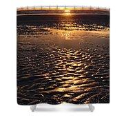 Golden Sunset On The Sand Beach Shower Curtain by Setsiri Silapasuwanchai