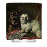 Good Companions Shower Curtain by Earl Thomas