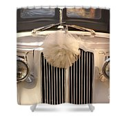 Got Married  Shower Curtain by Aimelle