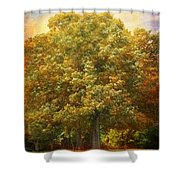 Graves Grove Shower Curtain by Jai Johnson