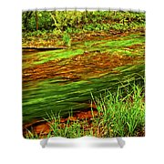 Green Forest River Shower Curtain by Elena Elisseeva