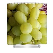 Green Grapes and Purple Mum Shower Curtain by Barbara Griffin