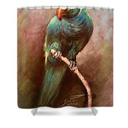 Green Parrot Shower Curtain by Ylli Haruni