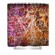 Grunge Background 3 Shower Curtain by Carlos Caetano