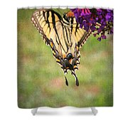 Hanging On Shower Curtain by Darren Fisher