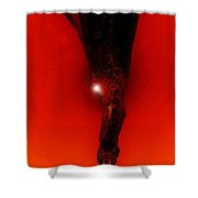 Hell Fall Shower Curtain by David Lee Thompson