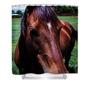 Hello  Shower Curtain by Charles Muhle