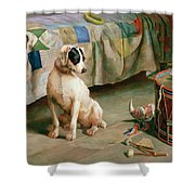 Hide and Seek Shower Curtain by Arthur Charles Dodd