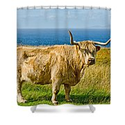 Highland Cow Shower Curtain by Chris Thaxter