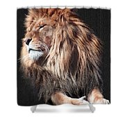 His Majesty Shower Curtain by Bill Stephens