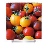 Homegrown Shower Curtain by Jenny Hudson