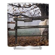 Horse At Fence Shower Curtain by Jim Corwin and Photo Researchers