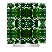 Hosta Leaves Shower Curtain by  Onyonet  Photo Studios
