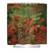 Huckleberry Leaves In Fall Color Shower Curtain by One Rude Dawg Orcutt