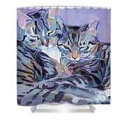 Hugs Purrs And Stripes Shower Curtain by Kimberly Santini