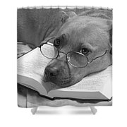 I Read My Bible Every Day . Bw Shower Curtain by Renee Trenholm