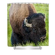 I See You Shower Curtain by Jon Berghoff