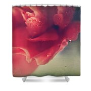 I Wonder If You Ever Miss Me Shower Curtain by Laurie Search