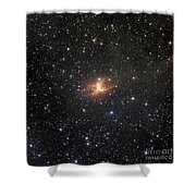 Ic 2220, Known As The Toby Jug Nebula Shower Curtain by Don Goldman