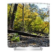If A Tree Falls Shower Curtain by Bill Cannon