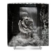 Intellectual   Gargoyle Shower Curtain by Cheryl Young