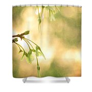 Interlude Shower Curtain by Amy Tyler