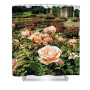 Irish National War Memorial Gardens Shower Curtain by The Irish Image Collection