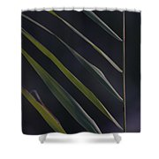 Just Grass Shower Curtain by Heiko Koehrer-Wagner