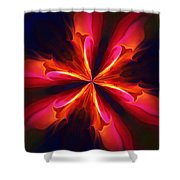 Kaliedoscope Flower 121011 Shower Curtain by David Lane