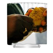Labors Of Love Shower Curtain by Karen Wiles