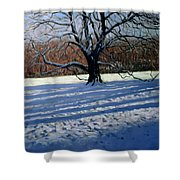 Large Tree Shower Curtain by Andrew Macara