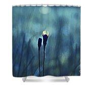 Le Centre De L Attention - Blue S0203d Shower Curtain by Variance Collections